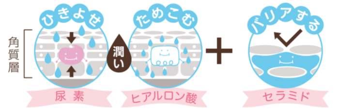 尿素のしっとりクリームの保湿力